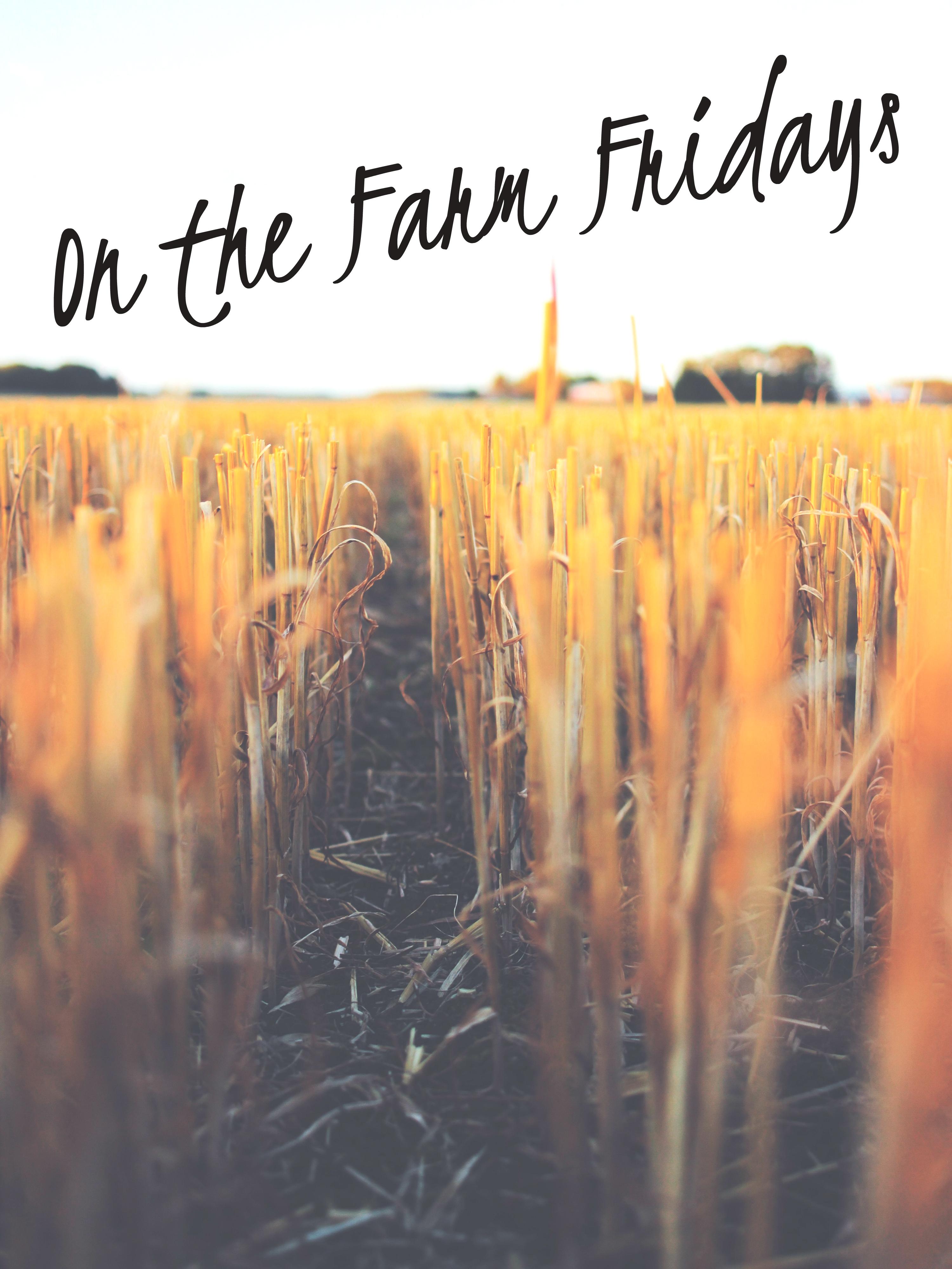 On The Farm Fridays